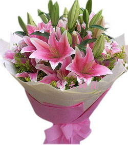 美好的祝愿(图片)-爱慕鲜花速递