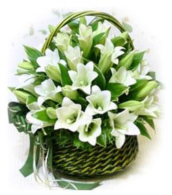 笑笑心情 上海qq爱鲜花礼品网 鲜花专区 节日花 高清图片