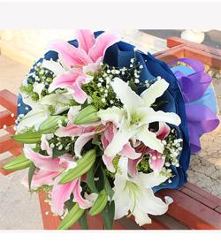 白百合粉百合花束(图片)-爱慕鲜花速递