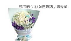 白玫瑰-纯洁的心