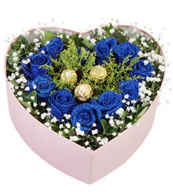 11朵蓝玫瑰巧克力(图片)