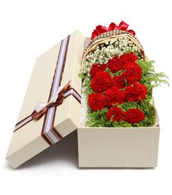 红色康乃馨花盒(图片)