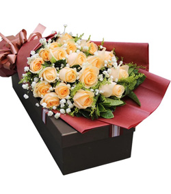 19枝香槟玫瑰花盒(图片)