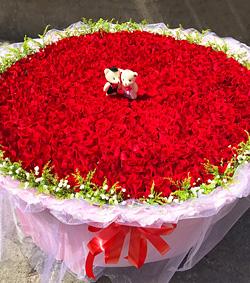 999朵红玫瑰(图片)