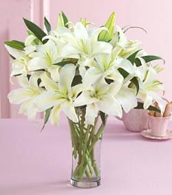 百合瓶花(图片)