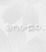 多色绣球花束